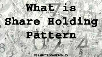 what is shareholding pattern